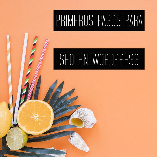 pasos SEO para WordPress